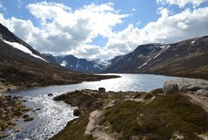 Cairngorms – the last stronghold for British wildlife