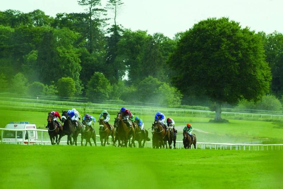 Races at Gowran Park Ireland