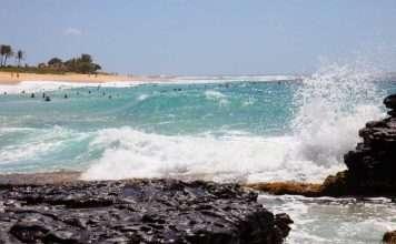 sandy beach 11768521